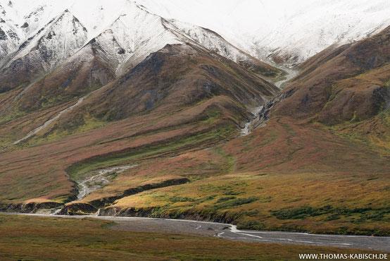 Landschaftsfotografie im Denali NP