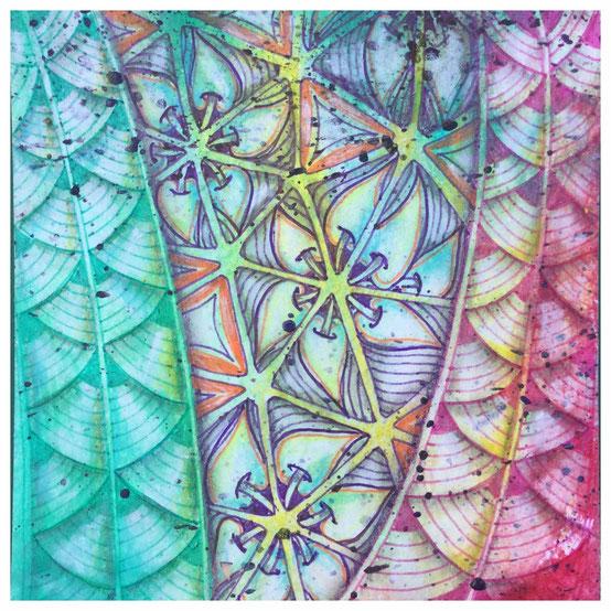 patterns: shattuck, tripoli
