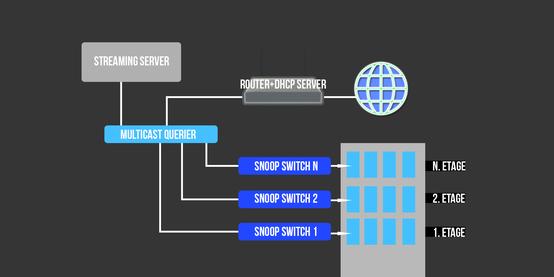 Aufbau eines IP - TV - Systems