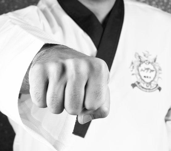 Taekwondo Schule in Hamburg Altona Bahrenfeld - Traditionelle Kampfkunst für Groß und Klein