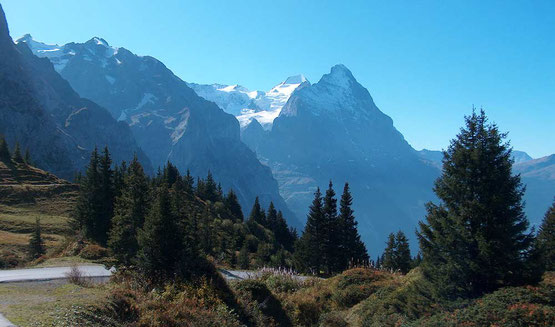 Wanderreise ohne Gepäck im Welterbe Jungfrau-Aletsch: Grosse Scheidegg