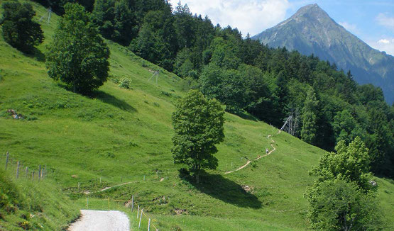 Gourmet Wanderung im Berner Oberland: Panoramaweg Thunersee