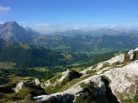 Weitwandern auf dem Bärentrek-Via Alpina vom Berner Oberland in die Westschweiz: Blick in die Westschweiz
