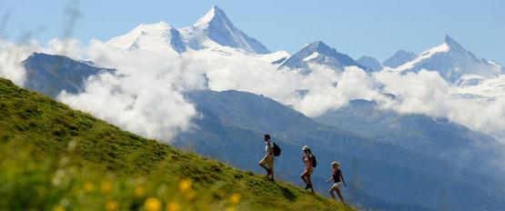 Wanderreise mit Gepäcktransport vom Berner Oberland ins Wallis: um den Wildstrubel