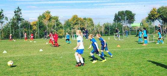 Funino-Turnier Mädchenfußball E-Mädchen F-Mädchen G-Mädchen SG Oldesloe Reinfeld