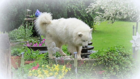 Moritz am 16.06.2008 geboren.