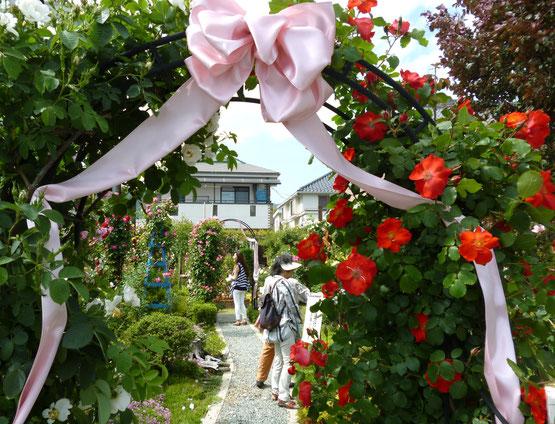 「粟生外院バラ祭」の様子