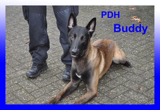 Foto mit freundl. Gen. Polizei Pressestelle Heinsberg