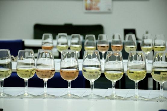 Sparkling wine Flight