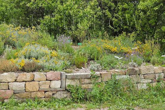 trockenmauern als beetbegrenzungen wildbienenschutz im naturgarten. Black Bedroom Furniture Sets. Home Design Ideas