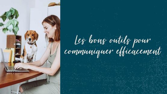 Mailchimp / Conseil Communication TPE, Commerces, Indépendant