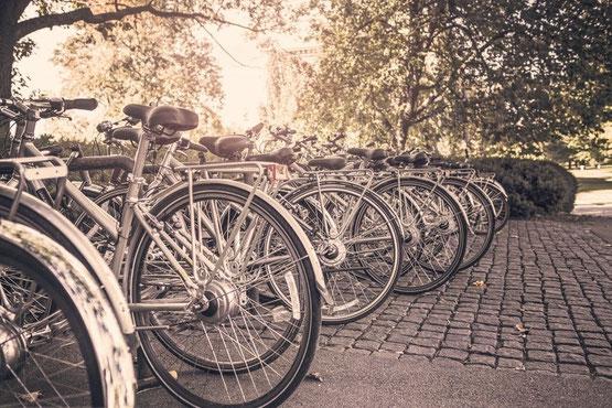 vélos de location garés