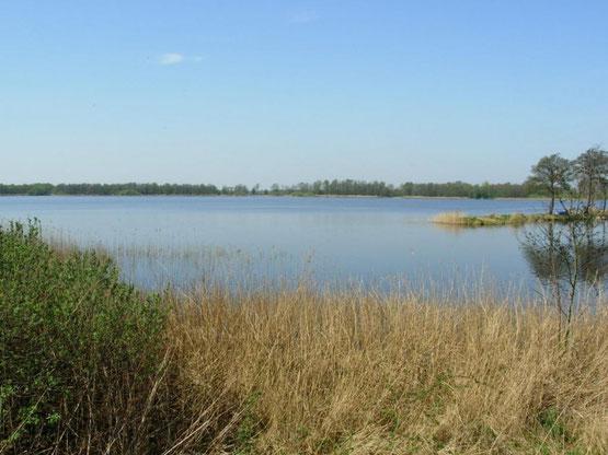 Te huur mooi wellness vakantiehuis voor 10 personen in Friesland met gratis Wifi