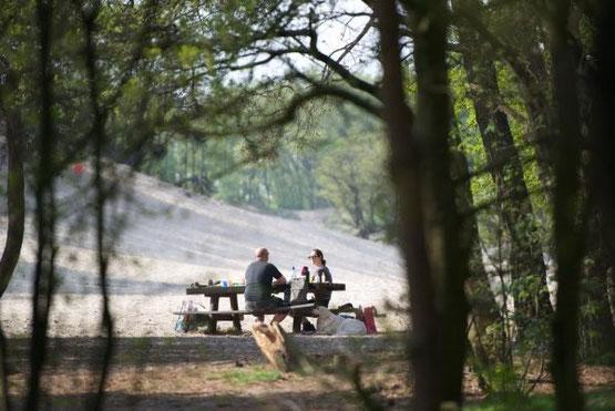 Te huur prachtige groepsaccommodatie voor 12 personen in Noord Brabant met Wifi, honden toegestaan