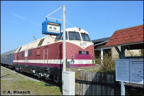 Am 30. März 2019 ist 228 504-7 (ex MEG 202) bereits arg ausgeblichen. Ihre Heimat ist immer noch das Bw Staßfurt