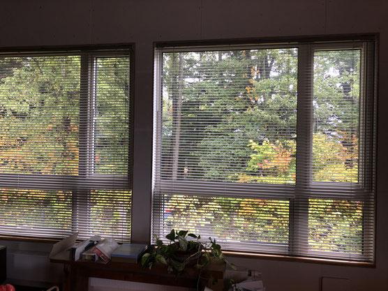 テーブルから見る窓の外が日々色づいていきます。