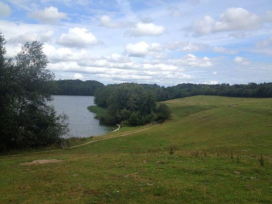 der Sankelmarker See