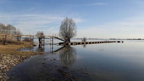 Lac du Der en Champagne au mois de mars 2017 (Photo Antoine Cubaixo)