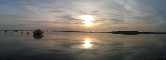 Lac du Der le 07 mars 2015