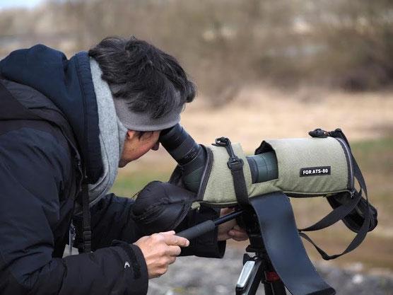 Antoine Cubaixo votre guide ornithologue au Lac du Der