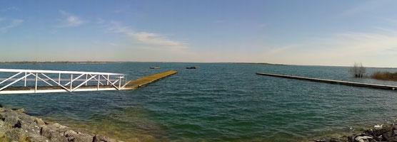 Lac du Der le 7 avril 2015