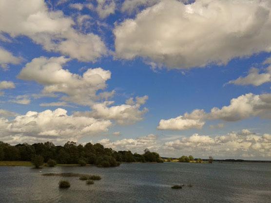 Lac du Der le 07 mai 2014