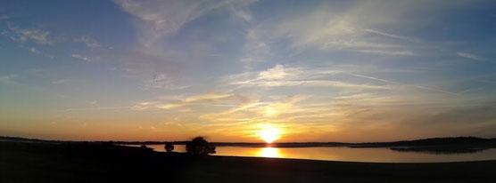 Lac du Der le 12 novembre 2015
