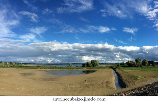 Lac du Der en Champagne le 01 octobre 2016