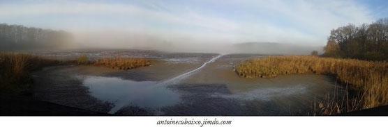 Lac du Der le 05 décembre 2015