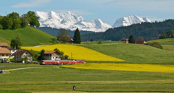 Walkringer Moos mit Schneebergen im Hintergrund