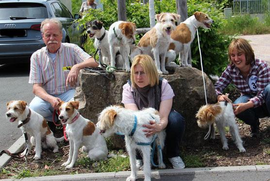 Royal Dog Show 2016 in Höchst - the winner team