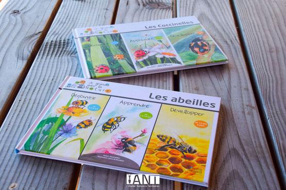 abeilles, livre, jeunesse, illustration, aquarelle, pédagogique, sensibilisation