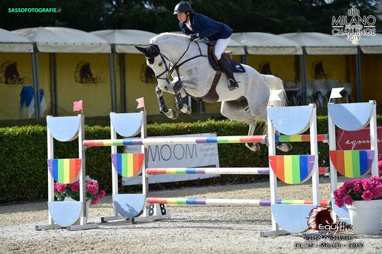 Pferd: Leone JEI