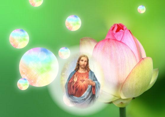 キリストの言葉・癒し