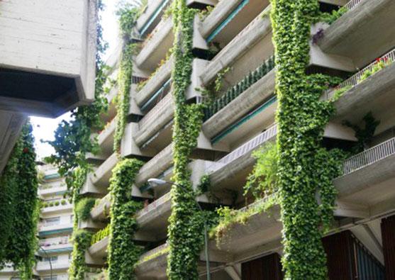 Bitarte Arquitectura + Comunicacion / Full home renovation in Madrid's Maravillas neighbourhood/ La casa de las Acelgas/ Chard House / www.bitartearquitectura.com