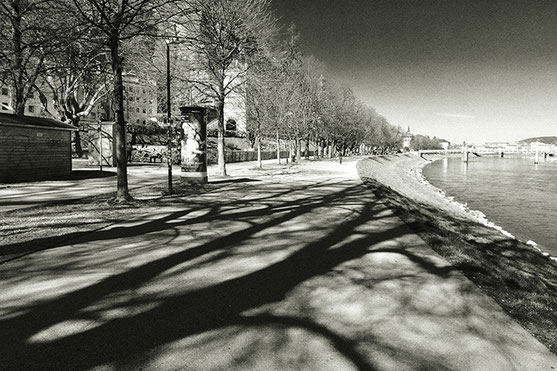 Black and white photo. Promenade along the river Salzach in Salzburg