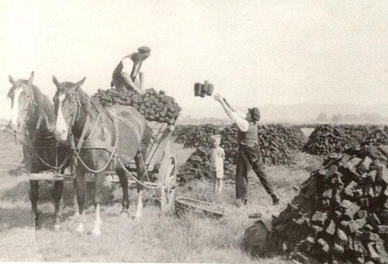 Abfuhr 1958  - mit Pferdegespann und Flachtenwagen