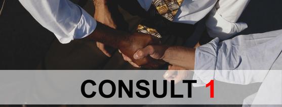 consult 1 in lakeland, fl