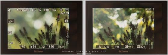 Nikon Z7 Bokeh Stefan Imig