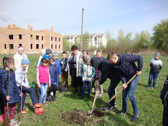 4-Б клас (кл. кер. Лянг О. В.) досаджує дерева в саду Небесної Сотні