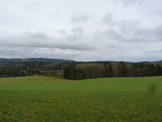 im Linzgau, gestern wars schöner