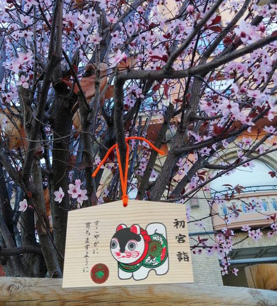 Ema de inu-hariko en árbol de la Gran Vía de Zaragoza