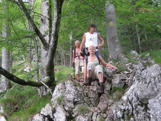 Roemenie wandelen Apuseni gebergte