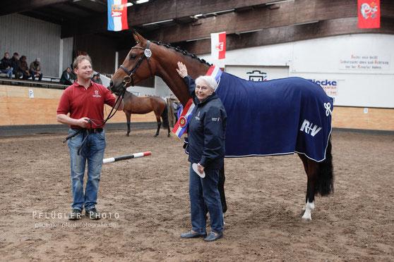 Siegerstute IPANEMA v. Cascadello I (Halbschwester zu Clarcon) Z: Avora Pferde GmbH