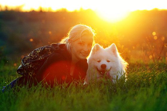 самоедская собака Буян