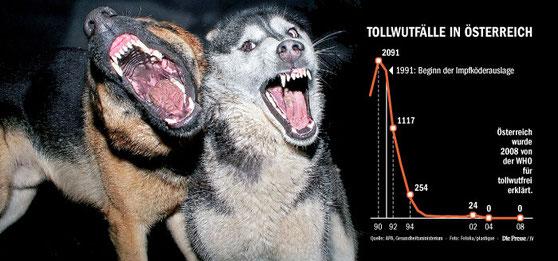 Tötung Tollwütiger Und Aggressiver Gefährlicher Hunde Ahlus