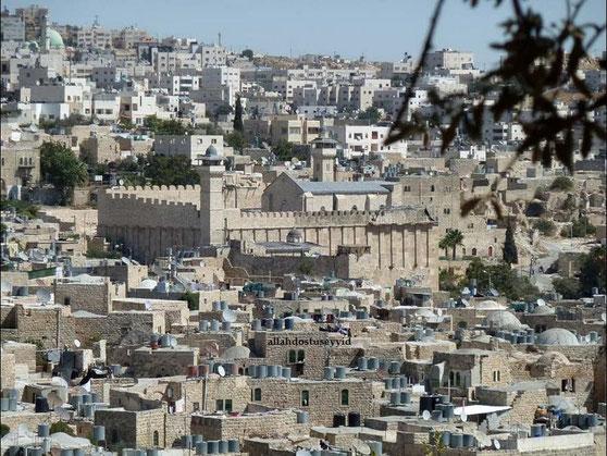 Ibrahim (Abraham) - Alayhi Salam [Palästina] 1