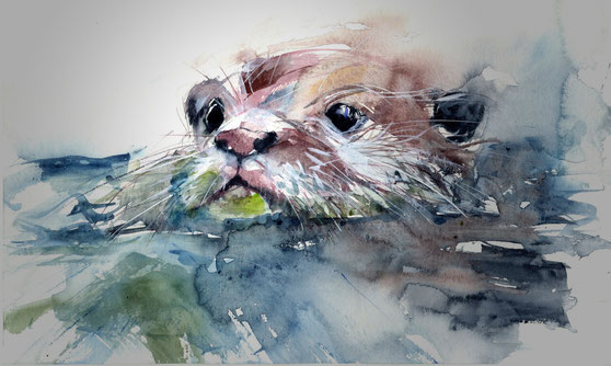 Otter, Fischotter , Aquarell, watercolour, Bad Ems, Le Gout, Hotel Bad Ems, Ayurveda