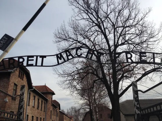 Visitar Auschwitz desde Cracovia español