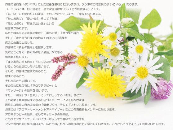 12.11.21 Wed タンポポからお客様へ(コンセプトにかえて…)